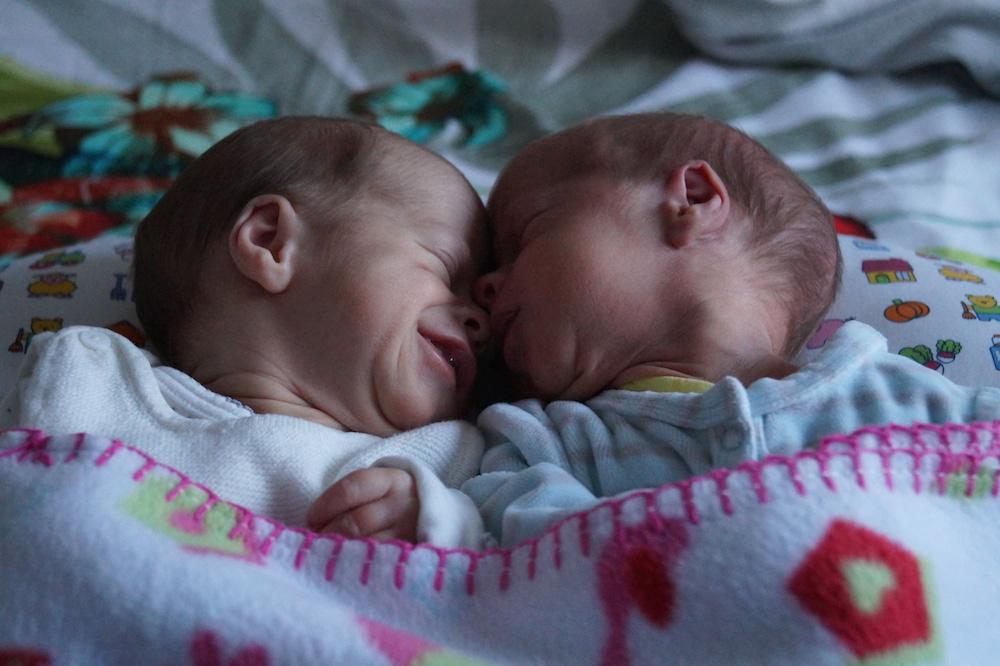 Zach et Loris, nés le 29 décembre 2014