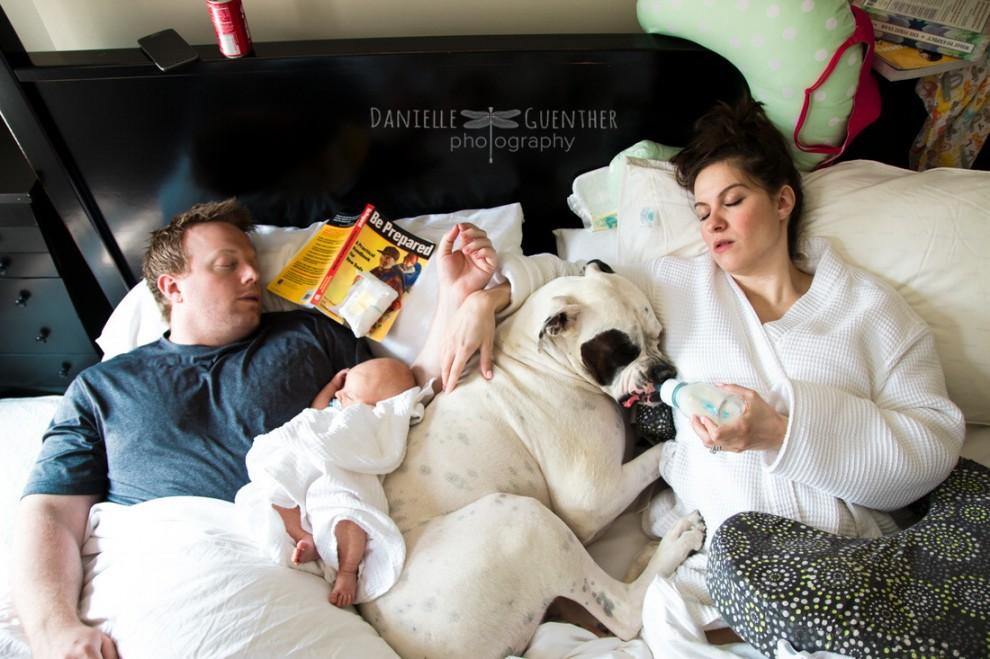 On n'avait pas assez de travail avec bébé, on a aussi un chien à nourrir. Un peu comme un second enfant.