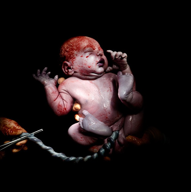 bebes naissances photos keven