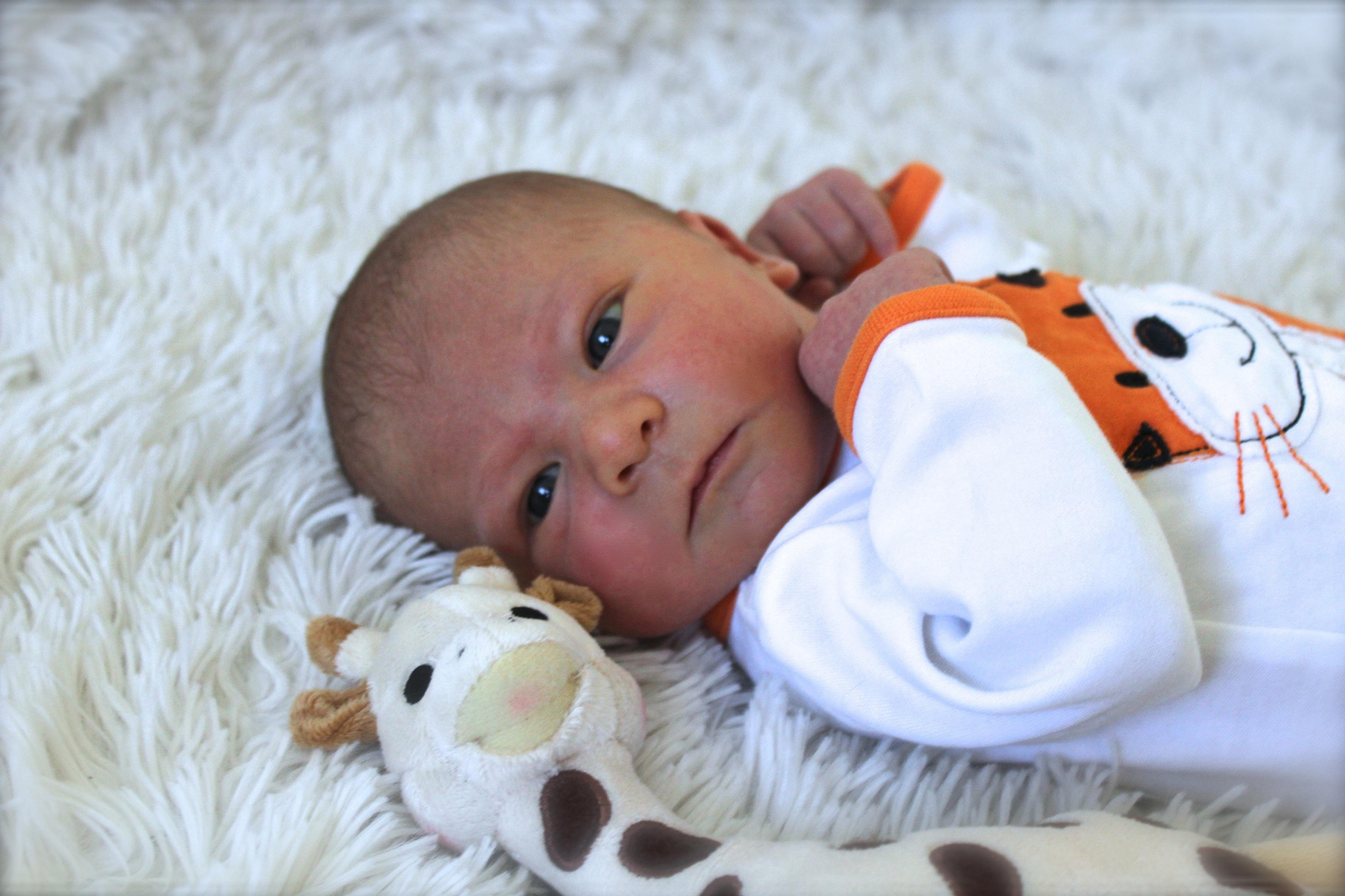 Lywenn, né le 19 avril 2015