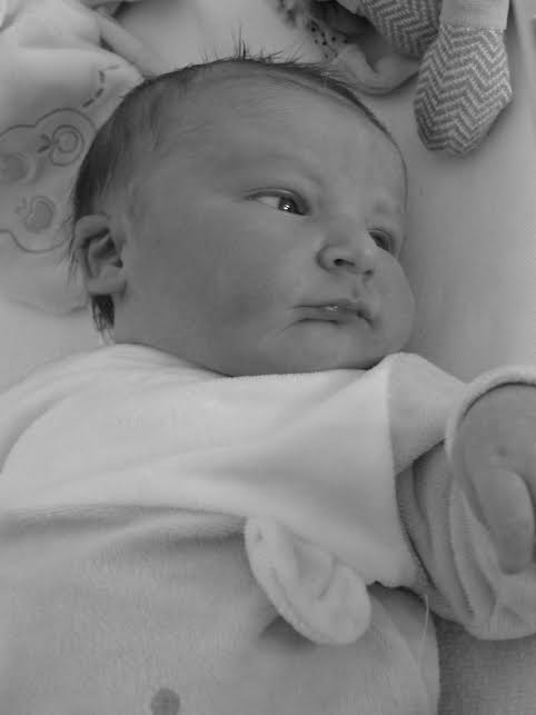 Noé, né le 22 avril 2015