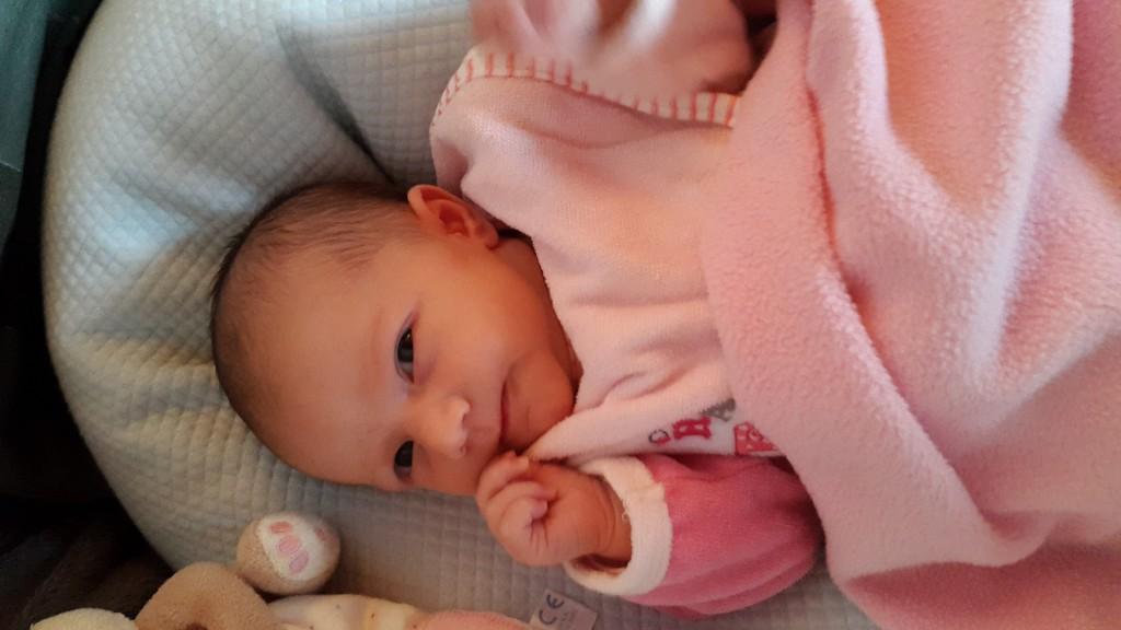 Lana, née le 10 mai 2015