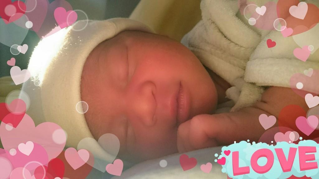 Shelsy née le 29 août 2015