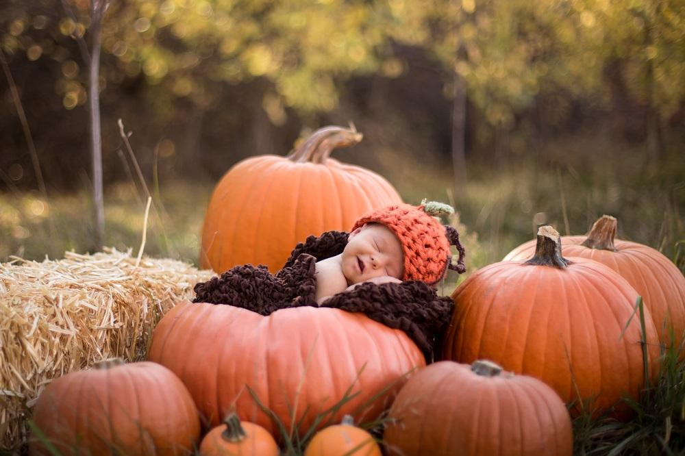 bebe automne