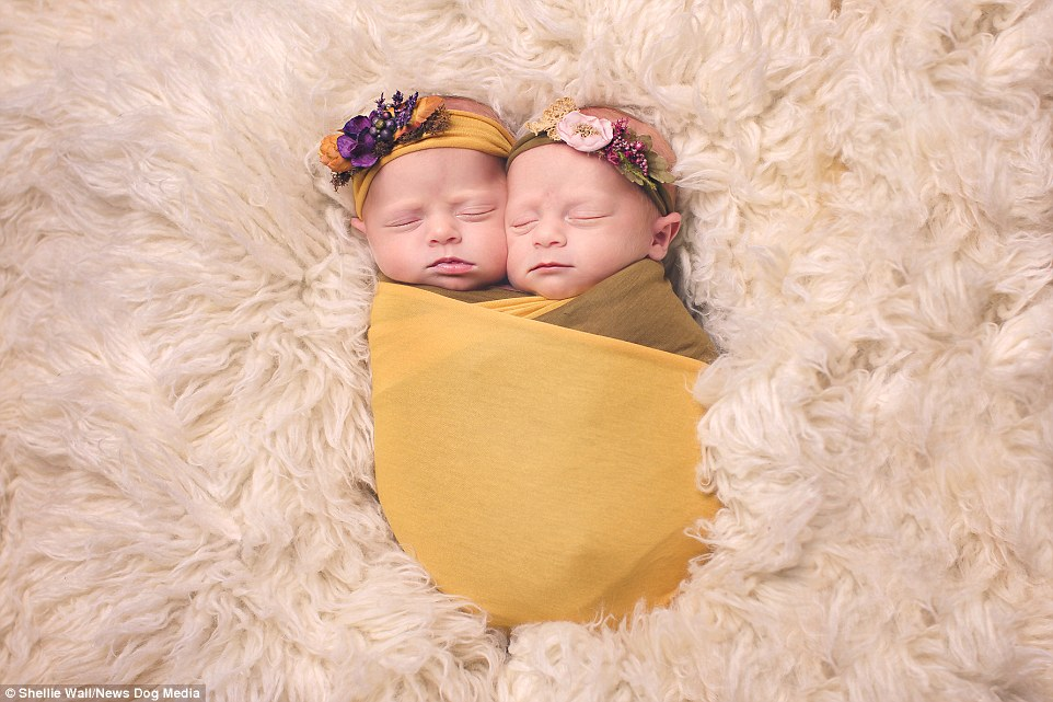 bebes jaunes