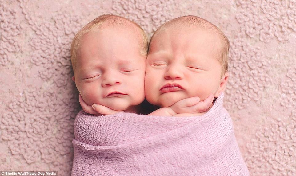 bebes roses