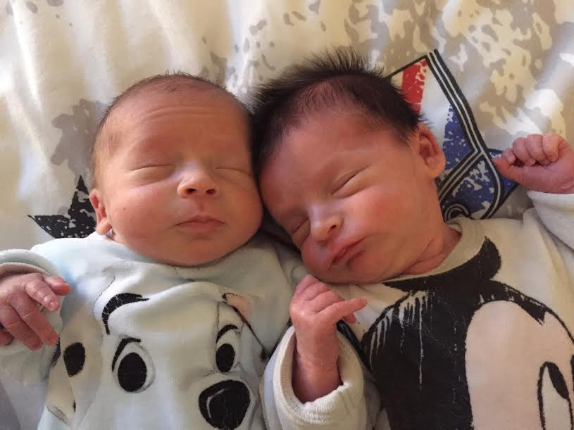Elyo et Roméo, nés le 7 novembre