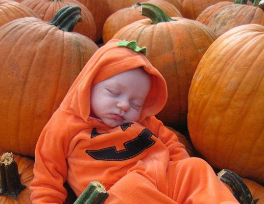 bebe drole endormi cirouille