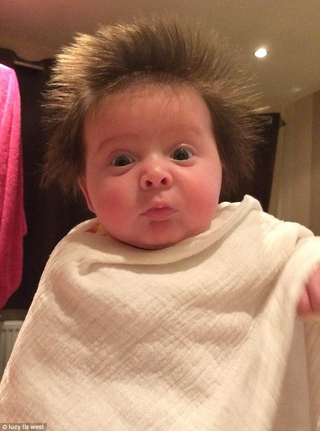 lottie toole bebe cheveux fous