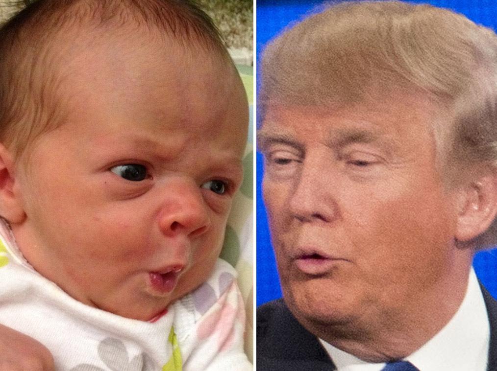 tetes-bebes-ressembles-donald-trump-3