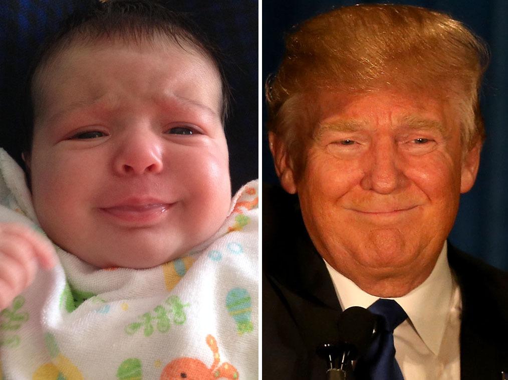 tetes-bebes-ressembles-donald-trump-8
