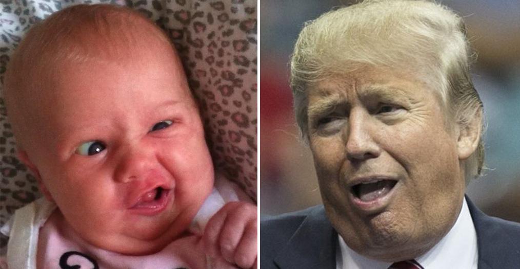 tetes-bebes-ressembles-donald-trump-9