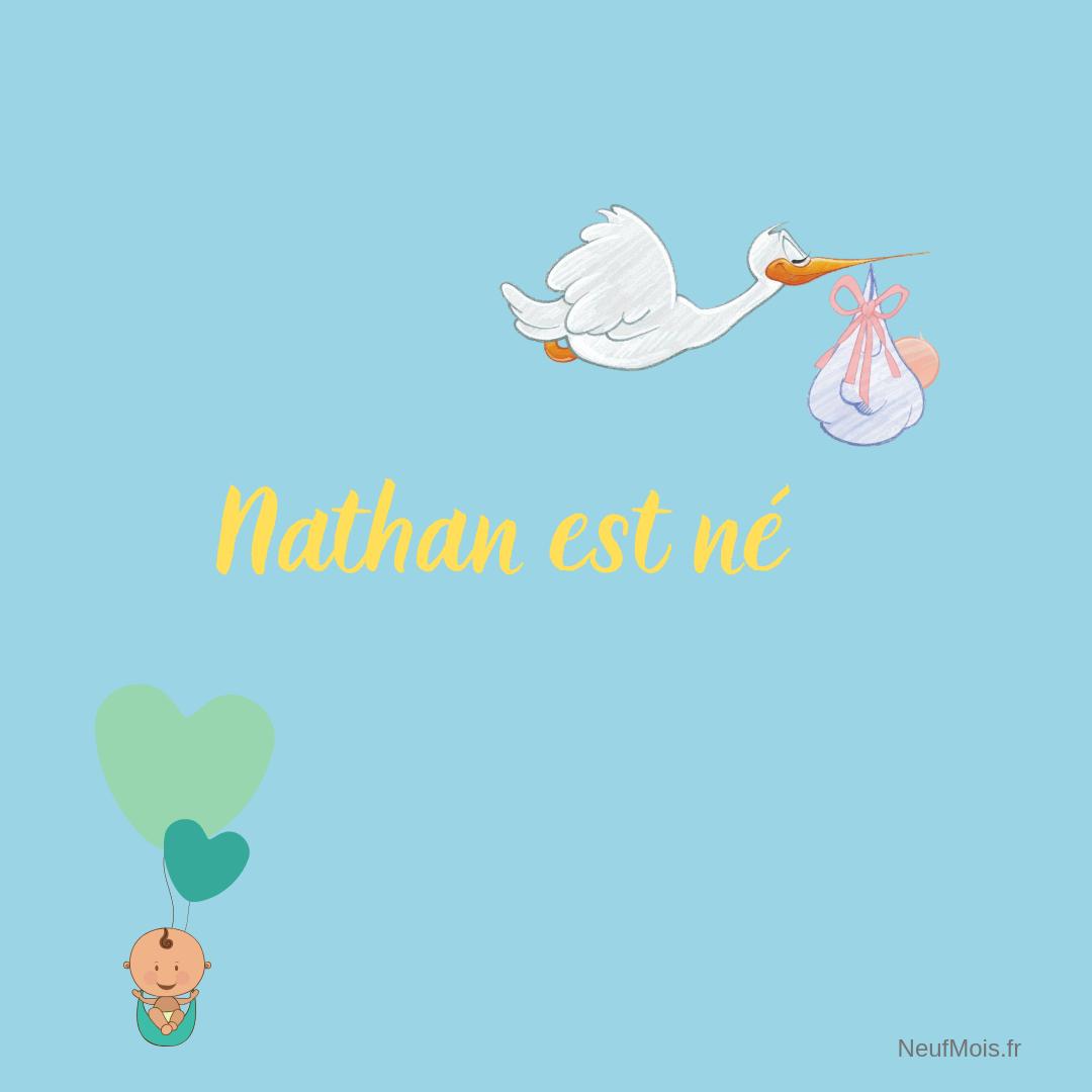 prénom nathan-né-neuf mois
