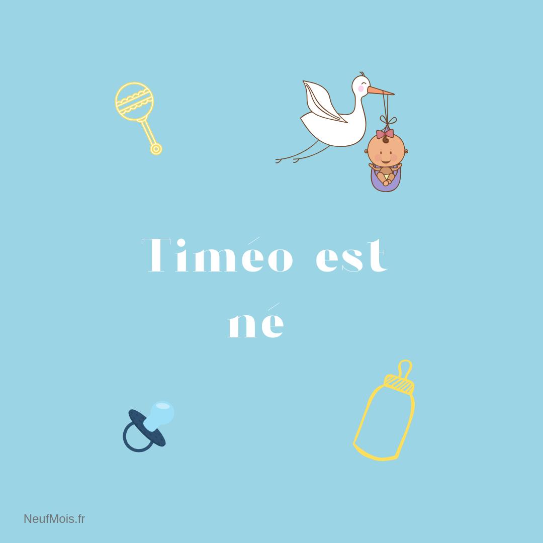 prénom timéo-né-neuf mois