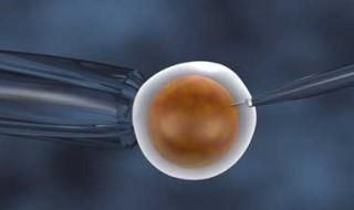10 choses à savoir sur le don de sperme