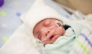 Hommage aux bébés prématurés en photos