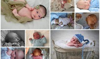 Nos bébés du mois de septembre 2016