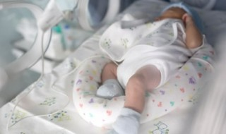 A quoi servent les poches alimentairespour bébé ?