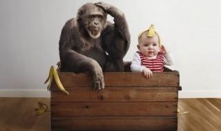 Comment ce bébé se retrouve dans des situations improbables ?