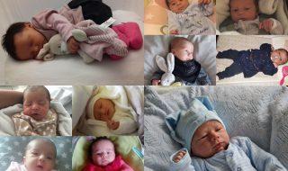 Nos bébés du mois de novembre 2016