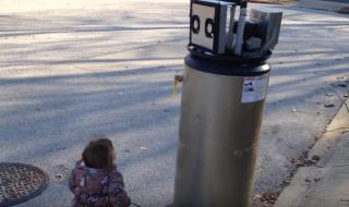 Vous ne devinerez jamais avec qui cette petite fille de 2 ans s'est liée d'amitié !
