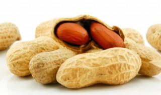 Si on faisait entrer les cacahuètes dans l'alimentation de bébé pour éviter les allergies ?