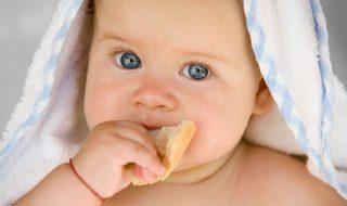 A quel âge introduire le gluten dans l'alimentation de bébé?