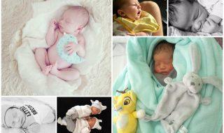 Nos bébés du mois d'août 2017