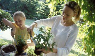 Eveil : 5 activités pour initier son enfant à l'écologie