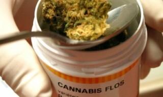 Fumer de la marijuana avant la grossesse double le risque de prématurité