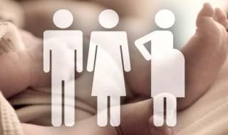 Le Parlement européen exige l'interdiction de la GPA