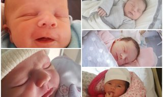 Nos bébés du mois d'avril 2017