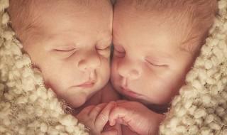 Des jumeaux dans un cœur rempli de tendresse