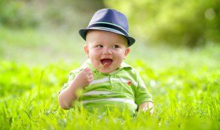 Maladie de Lyme : quelles précautions prendre en été pour bébé ?