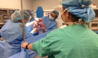 Vidéo : ces jumelles sont nées en se tenant la main et elles ne sont pas prêtes à se lâcher encore aujourd'hui !