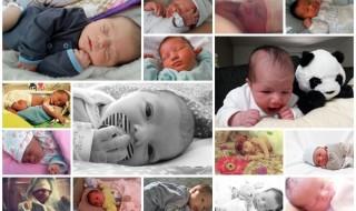 Nos bébés du mois d'avril 2015