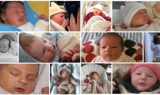 Nos bébés du mois de février 2014