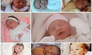 Nos bébés du mois de février 2015