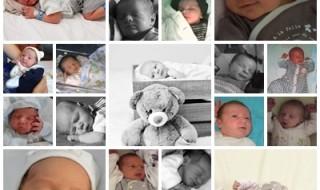Nos bébés du mois d'août