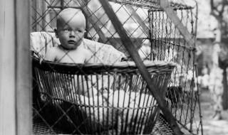 En 1920, on mettait les bébés en cage pour leur bien!