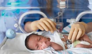 La photo-protection réduirait de moitié le taux de mortalité des prématurés
