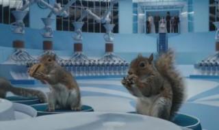 Daddy, je veux un écureuil !