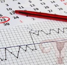 Ovulation, date d'ovulation et fertilité : on fait le point