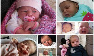 Nos bébés du mois de février
