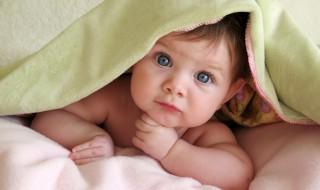 Une appli pour sauver la future vie… sociale de bébé