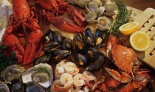 Quels poissons et fruits de mer pendant la grossesse ?