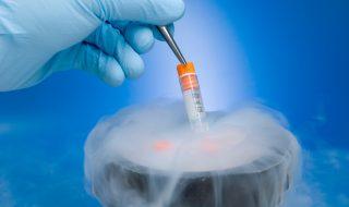 Procès : le sperme congelé de son mari décédé aurait été inséminé à d'autres femmes