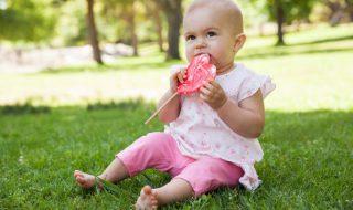 Alimentation de bébé : comment bien doser le sel, le sucre et les graisses ?