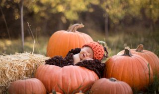 En automne, c'est la fête à la citrouille sur Neuf Mois !